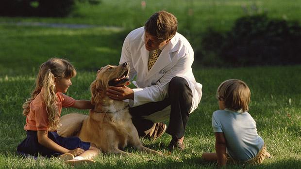 강아지 견종별 걸리기 쉬운 질병