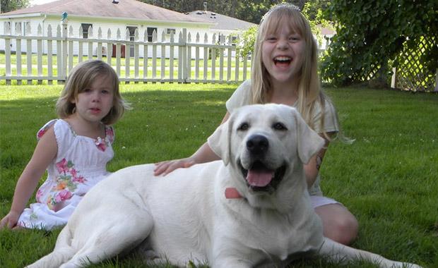 강아지와 가족관계의 중요성