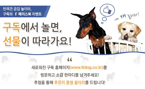 [종료] 구독 새단장 기념 페이스북 이벤트!