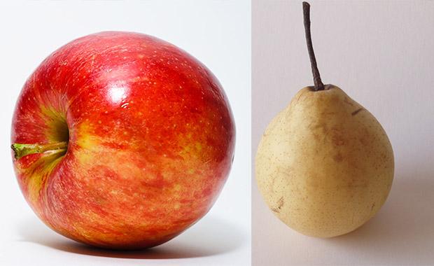 개에게 사과와 배는 피해야 될 과일입니다. 이 과일에 포함된 '비소' 성분은 강아지를 죽일 수도 있습니다.