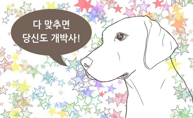 강아지 퀴즈 – 상식편